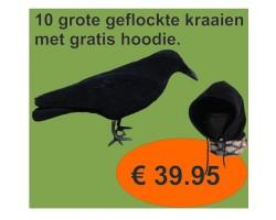 NOJG 0221 10 Kraaien + gratis hoodie